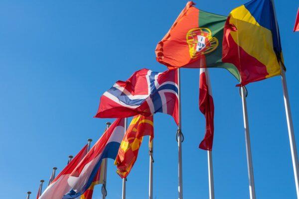 Servizi di Traduzione, come entrare nel mercato estero